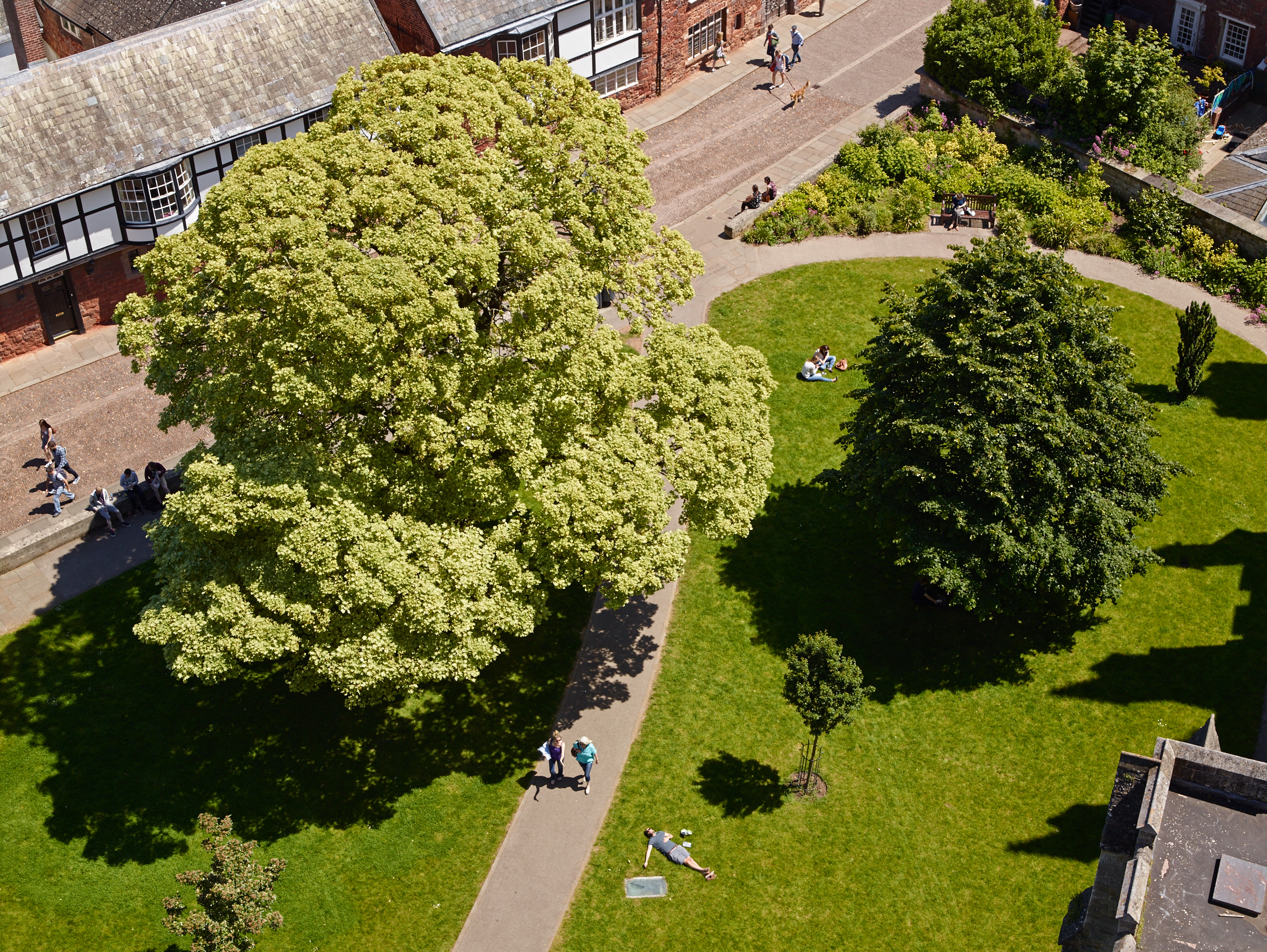 Aerial view, looking down from the Cathedral roof