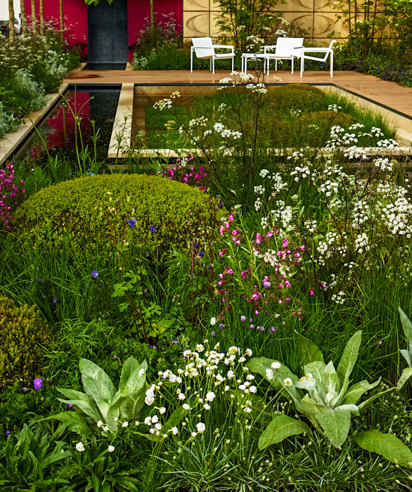 View of our Chelsea show garden 2013